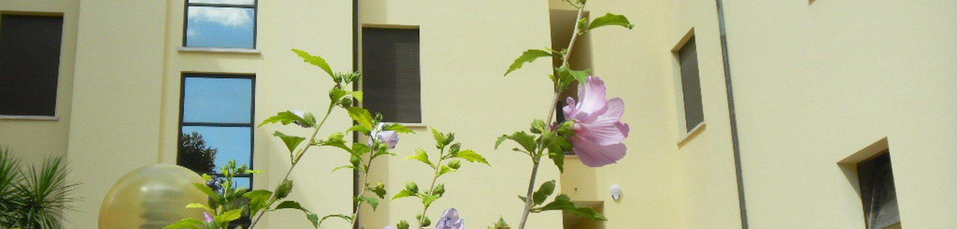 Istituto Sacro Cuore Roma Scuola Sacro Cuore - Particolare giardino